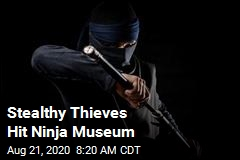 Stealthy Thieves Hit Ninja Museum