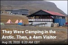 They Were Camping in the Arctic. Then, a 4am Visitor