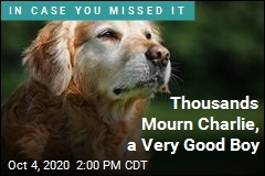 Thousands Mourn Charlie, a Very Good Boy