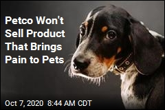 Petco: Say Goodbye to 'Shock' Collars in Our Stores