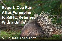 Officials: 2 Cops Fired, Face Charges for Killing Porcupines