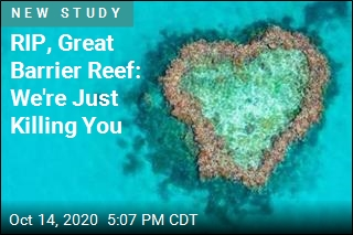 News Gets Even Worse for the Great Barrier Reef