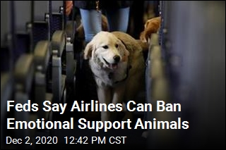 Feds Say Airlines Can Ban Emotional Support Animals