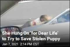 She Hung On 'for Dear Life' to Try to Save Stolen Puppy
