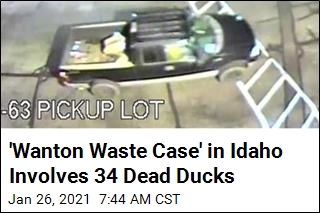 Idaho Officials Want to Know Who Dumped 34 Dead Ducks