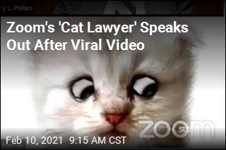 Zoom's 'Cat Lawyer' Speaks Out After Viral Video