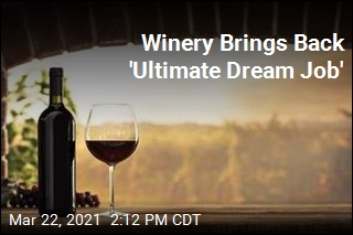 Winery Offers 'Ultimate Dream Job' for Wine Lover