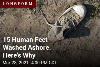 15 Human Feet Washed Ashore. Science Explains Why