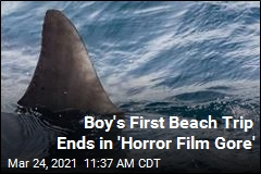 Boy's First Beach Trip Ends in 'Horror Film Gore'