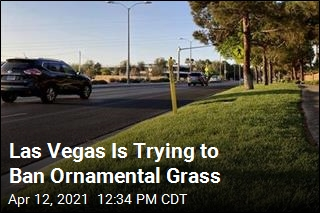 Las Vegas Is Trying to Ban Ornamental Grass