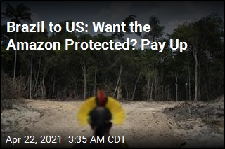Brazil to US: Pay Us $1B to Protect Amazon