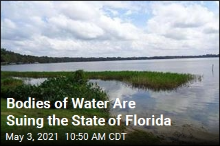 Bodies of Water Are Suing the State of Florida