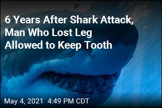 Guy Who Lost Leg in Shark Attack Can Now Keep Its Tooth