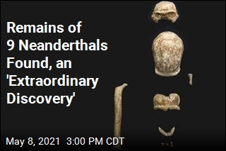 Remains of 9 Neanderthals Found, an 'Extraordinary Discovery'