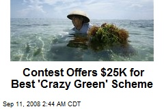 Contest Offers $25K for Best 'Crazy Green' Scheme