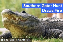 Southern Gator Hunt Draws Fire