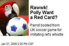 Rawwk! Polly Want a Red Card?