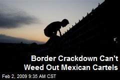Border Crackdown Can't Weed Out Mexican Cartels