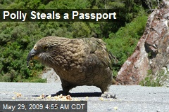 Polly Steals a Passport