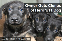 Owner Gets Clones of Hero 9/11 Dog