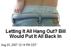 Letting It All Hang Out? Bill Would Put It All Back In