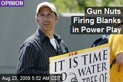 Gun Nuts Firing Blanks in Power Play