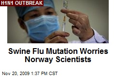 Swine Flu Mutation Worries Norway Scientists