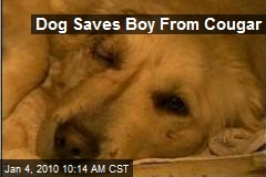 Dog Saves Boy From Cougar