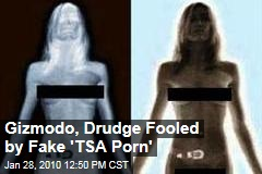 Gizmodo, Drudge Fooled by Fake 'TSA Porn'