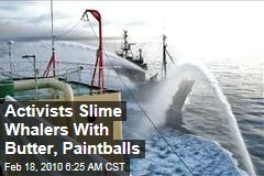 Activists Slime Whalers With Butter, Paintballs