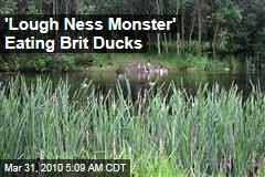 'Lough Ness Monster' Eating Brit Ducks