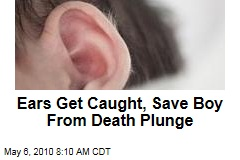 Ears Save Boy From Death Plunge