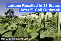 Lettuce Recalled in 23 States After E. Coli Outbreak