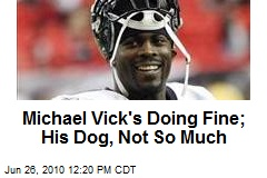 Michael Vick's Doing Fine; His Dog, Not So Much