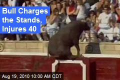 Bull Charges the Stands, Injures 40
